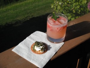 Strawberry-Basil G & T with Goat Cheese-Pesto Cracker